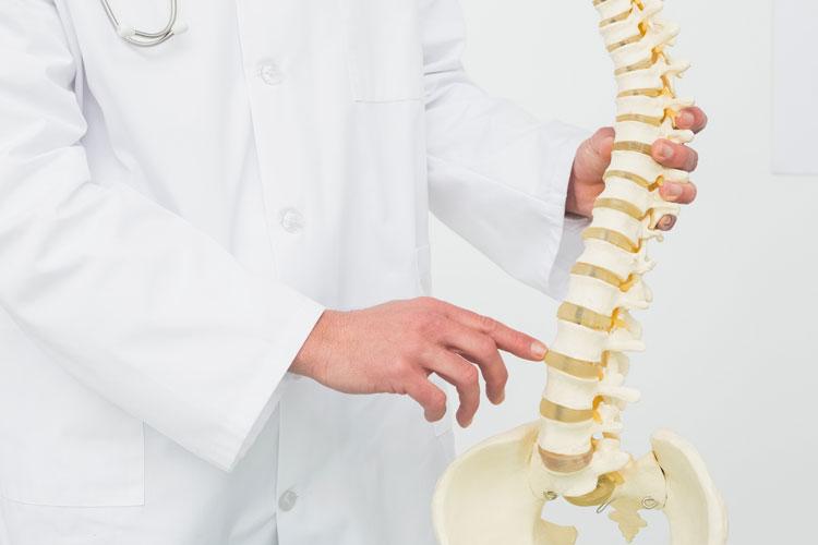 Doctor - Spine